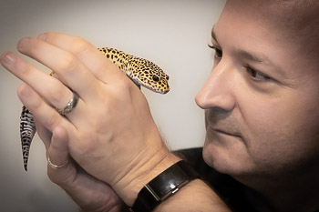 About the Author: H. Evan Miller & Leopard Gecko
